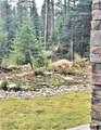 16 Mountain Trail Rd, Ulery's Lakes Lot 1 - Photo 36