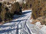Lot 308 Pine Top Trail - Photo 11