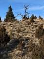 Lot 308 Pine Top Trail - Photo 22