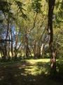 220 Meadow Creek - Photo 49