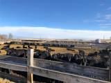 5 Spencer Farms Lane - Photo 7