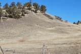 196 Fleshman Creek Road - Photo 30