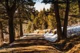 875 Resolute Ridge Road - Photo 44