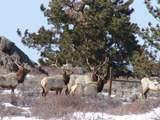 nhn Blue Mountain Dr, Wheatland, Wyoming - Photo 36
