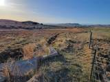 TBD Shoddy Springs Road - Photo 29