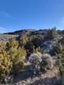 TBD Shoddy Springs Road - Photo 40