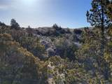 TBD Shoddy Springs Road - Photo 43