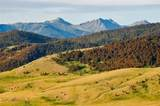 140 Cowboy Trail - Photo 19