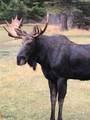 6333 Little Blackfoot River Road - Photo 4