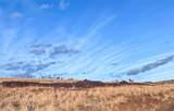 TBD Wild Horse Meadow - Photo 17