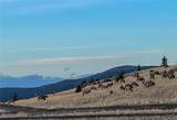 TBD Wild Horse Meadow - Photo 19