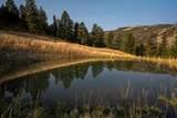 TBD Mol Heron Creek Road - Photo 29