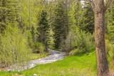 TBD Mol Heron Creek Road - Photo 4
