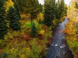 300 Black Bear Road - Photo 2
