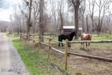 2167 Stagecoach Trail - Photo 15