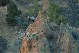 TBD Cinnabar Basin Road - Photo 17