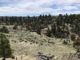 TBD Dry Creek Road - Photo 24