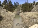 TBD Dry Creek Road - Photo 4