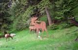 100 Pony Creek Road - Photo 21