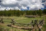 14948 Pony Creek Road - Photo 42
