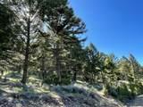 11 Pine Hill Drive - Photo 6