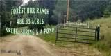 2408 Antelope Gulch Road - Photo 1