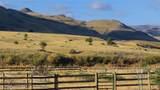 88 Bridger Meadow Lane - Photo 23