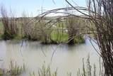 876 Lower Sweet Grass Rd - Photo 29