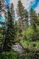 Stone Creek Retreat in Bridger Canyon - Photo 19