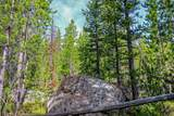 69a Clear Creek Trail - Photo 4