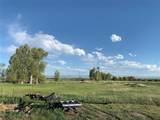 660 Dry Creek - Photo 31