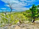 TBD Dry Creek Road - Photo 11