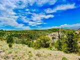 TBD Dry Creek Road - Photo 16