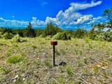 TBD Dry Creek Road - Photo 20