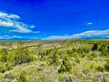 TBD Dry Creek Road - Photo 27