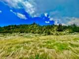 TBD Dry Creek Road - Photo 45