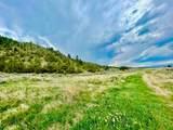 TBD Dry Creek Road - Photo 47