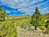 TBD Dry Creek Road - Photo 7