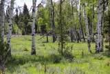 9741 Alice Creek Road - Photo 16