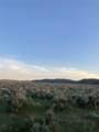 LotA 57 Sheep Creek - Photo 14