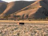 LotA 57 Sheep Creek - Photo 8