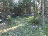 TBD Buck Ridge Trail - Photo 9