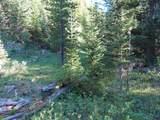 TBD Buck Ridge Trail - Photo 10