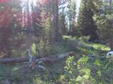TBD Buck Ridge Trail - Photo 11