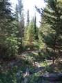 TBD Buck Ridge Trail - Photo 12