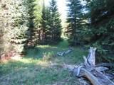 TBD Buck Ridge Trail - Photo 13