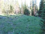 TBD Buck Ridge Trail - Photo 14
