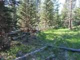 TBD Buck Ridge Trail - Photo 16
