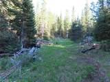 TBD Buck Ridge Trail - Photo 17