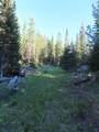 TBD Buck Ridge Trail - Photo 18
